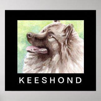Keeshond dog Poster Art