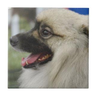 Keeshond Dog Tile