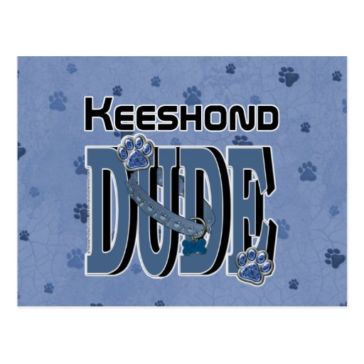 Keeshond DUDE Post Cards