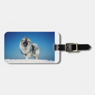 keeshond full in snow.png bag tag