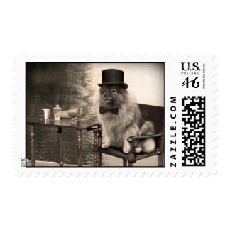 Keeshond Gentleman s Afternoon Postage