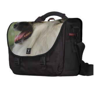 Keeshond Laptop Commuter Bag