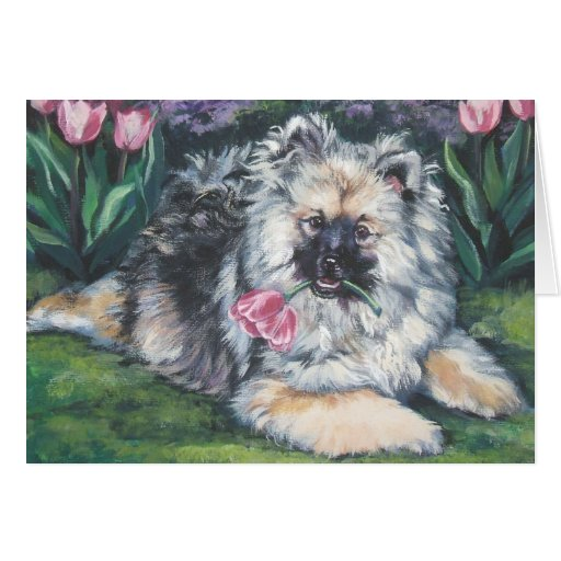 Keeshond Mothers day Card