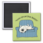 "Keeshond ""Non-Sporting Breed"" 2 Inch Square Magnet"