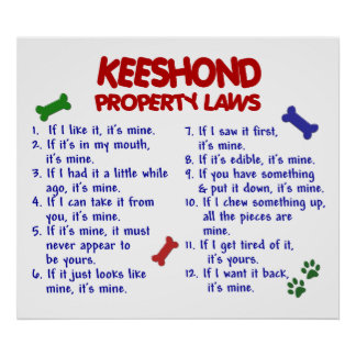 KEESHOND PL2 POSTER