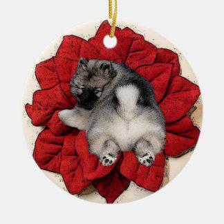 Keeshond Poinsettia Puppy Ornament