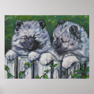 keeshond pups art print