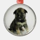 Keeshond Siberian Husky Crossbreed Puppy Christmas Tree Ornaments