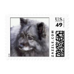 Keeshond Stamps