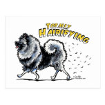 Keeshond Totally Hairifying Post Card