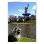 Keeshond y molino de viento holandés tarjeta