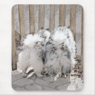 Keeshonds at the Gate Mouse Pad