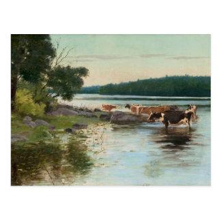 Keinänen's Lake View postcard