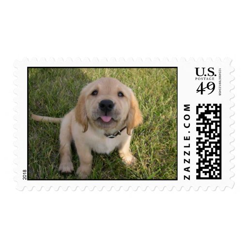 Kelly Berry Stamps
