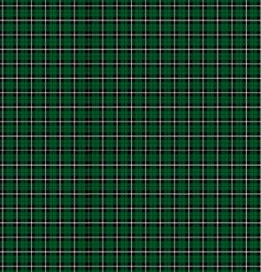 Kelly Green Irish White Black Stripe Plaid Shower Curtain