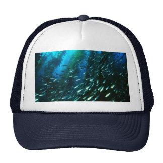 Kelp Forest Trucker Hat