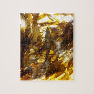 Kelp Shadows 2 Puzzle