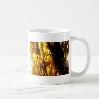 Kelp Shadows 3 Coffee Mug