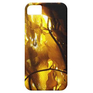 Kelp Shadows 3 iPhone SE/5/5s Case