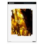 Kelp Shadows 3 Skin For iPad 3