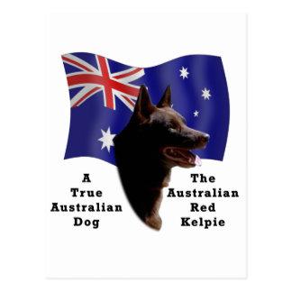 Kelpie rojo australiano con la bandera postal