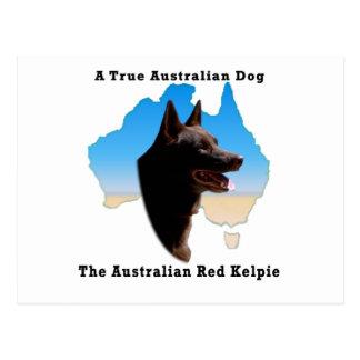 Kelpie rojo de Australia con el mapa Postal