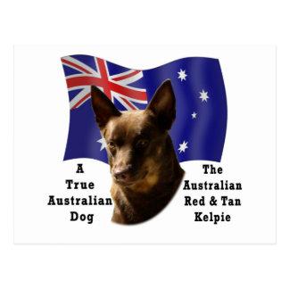 Kelpie rojo y del moreno australiano con la postal