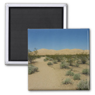 Kelso Dunes at Mojave National Park Magnet