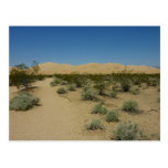 Kelso Dunes at Mojave National Park Postcard