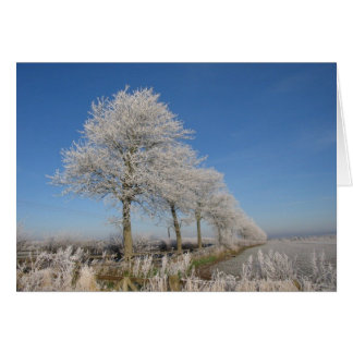 Kelso Trees Greeting Card