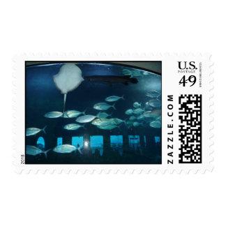 Kemah Restaurant Aquarium Stamp