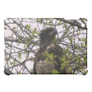 Kenai Alaska Golden Eagle Ipad Case