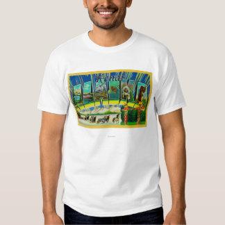 Kenai, AlaskaLarge Letter ScenesKenai, AK T Shirt