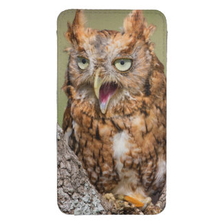 Kendall County, Texas. Eastern Screech-Owl 2 Galaxy S4 Pouch