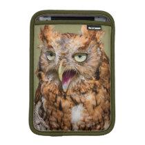 Kendall County, Texas. Eastern Screech-Owl 2 iPad Mini Sleeve