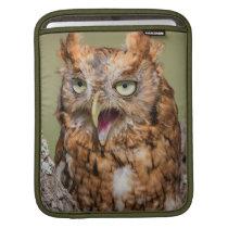 Kendall County, Texas. Eastern Screech-Owl 2 iPad Sleeve