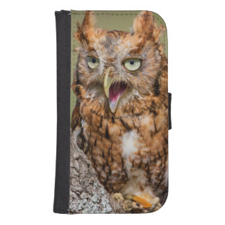 Kendall County, Texas. Eastern Screech-Owl 2 Wallet Phone Case For Samsung Galaxy S4