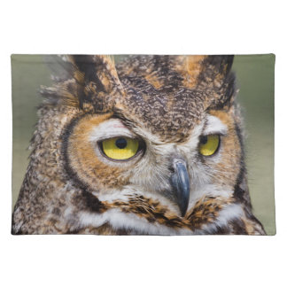 Kendall County, Texas. Great Horned Owl Cloth Placemat