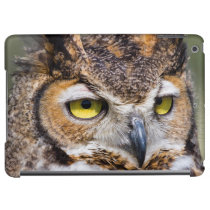 Kendall County, Texas. Great Horned Owl iPad Air Cover