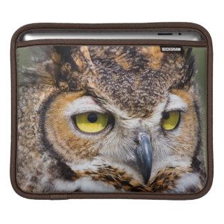 Kendall County, Texas. Great Horned Owl iPad Sleeve