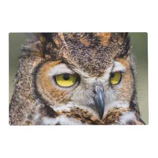 Kendall County, Texas. Great Horned Owl Placemat