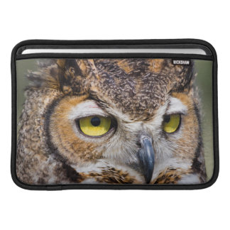 Kendall County, Texas. Great Horned Owl Sleeve For MacBook Air