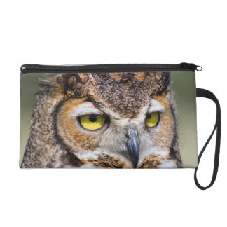 Kendall County, Texas. Great Horned Owl Wristlet Purse