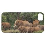 Kenia: El parque nacional del este de Tsavo, reúne iPhone 5 Case-Mate Cárcasa