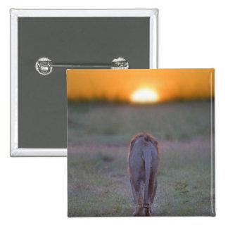 Kenia, Masai Mara Pin Cuadrado