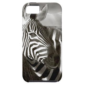 Kenia. Negro y blanco de la cebra y del llano iPhone 5 Cárcasa