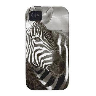 Kenia. Negro y blanco de la cebra y del llano Vibe iPhone 4 Carcasas