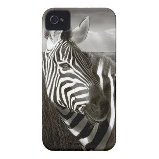 Kenia. Negro y blanco de la cebra y del llano iPhone 4 Fundas