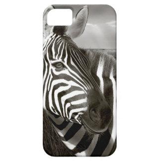 Kenia. Negro y blanco de la cebra y del llano iPhone 5 Case-Mate Coberturas