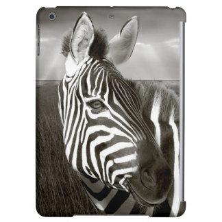 Kenia. Negro y blanco de la cebra y del llano